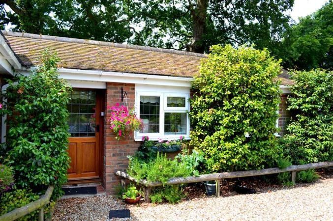 Hampshire Cottage Holidays - Click here for more about Camellias